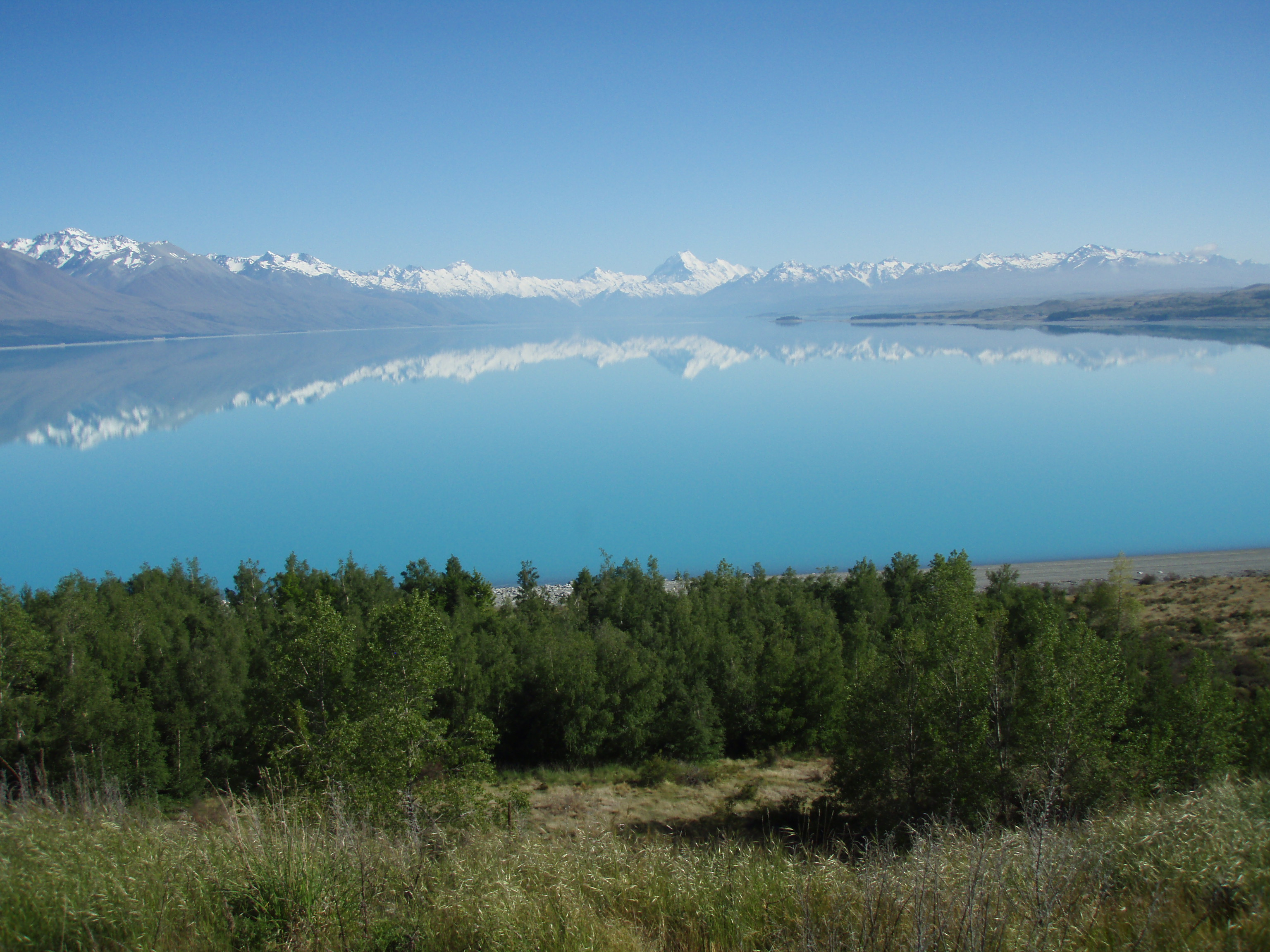 new zealand general information A comprehensive online new zealand travel guide and information directory with all the information you need to make planning your trip easier  medical and general .